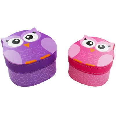 Owl Shaped Storage Boxes - Set of 2 image number 1