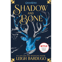 Shadow and Bone Trilogy & Six of Crows: 5 Book Bundle